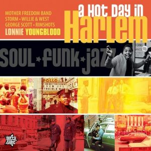A Hot Day In Harlem - The Soul of The City 1970-79 - Various Artists CD (Outta Sight)