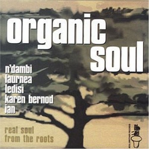 Organic Soul Volume 1 Real Soul From The Roots CD