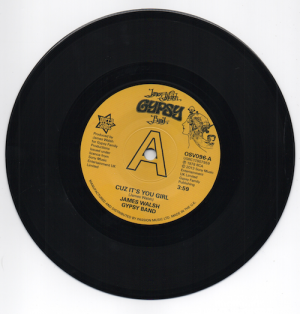 James Walsh Gypsy Band - Cuz It's You Girl / Bring Yourself Around DEMO 45