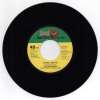 Preston Shannon - The Way I Love You / Be With Me Tonight 45